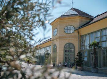 RUMäNIEN: Eisenstadt – Sehenswürdigkeiten & Tipps für die Städtereise