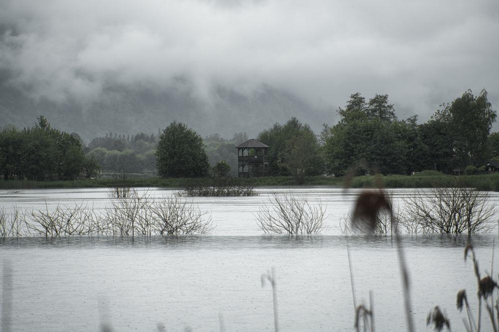 Das Bleistätter Moor am Ossiacher See ist auf jeden Fall einen Besuch wert