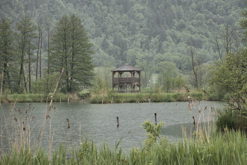 Eine besonders schöne Atmosphäre wurde uns hier am Moor beim Ossiacher See geboten