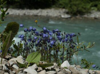 Lechweg 🥾 3. Etappe: Meine Erfahrung zwischen Warth und Holzgau