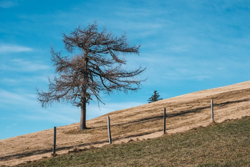 Wo das Wandern im Herbst in der Steiermark am schönsten ist