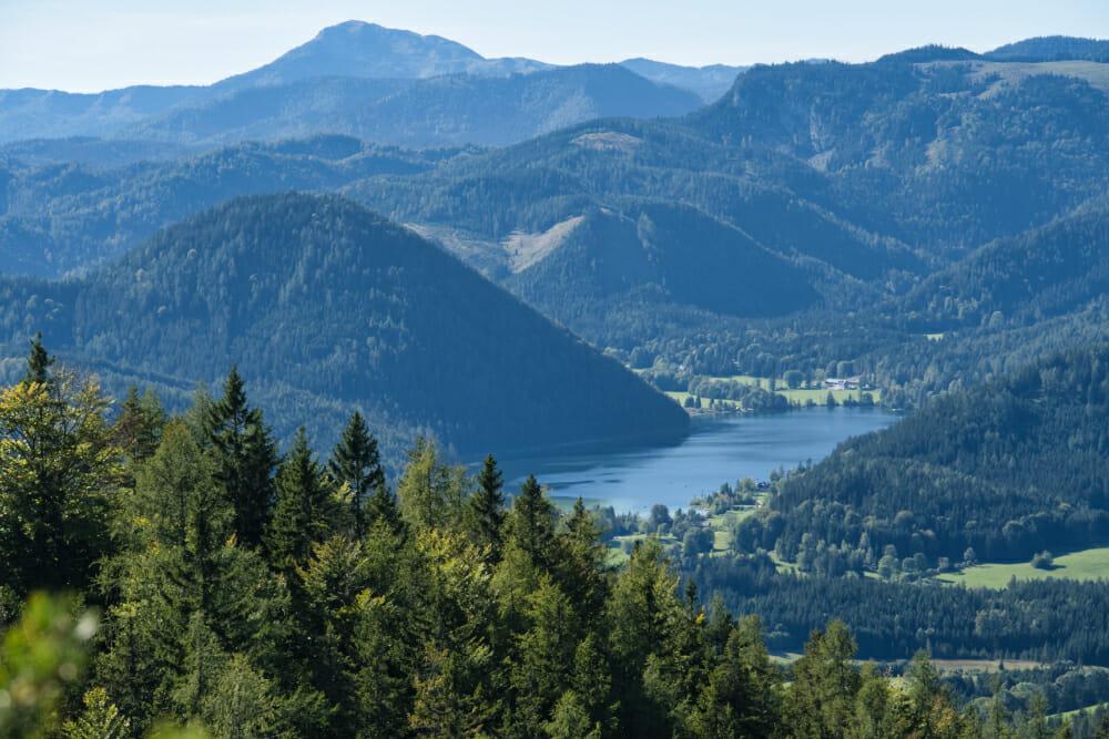 Ein malerischer Ausblick auf den Erlaufsee von der 3-Seen-Blick Wanderung