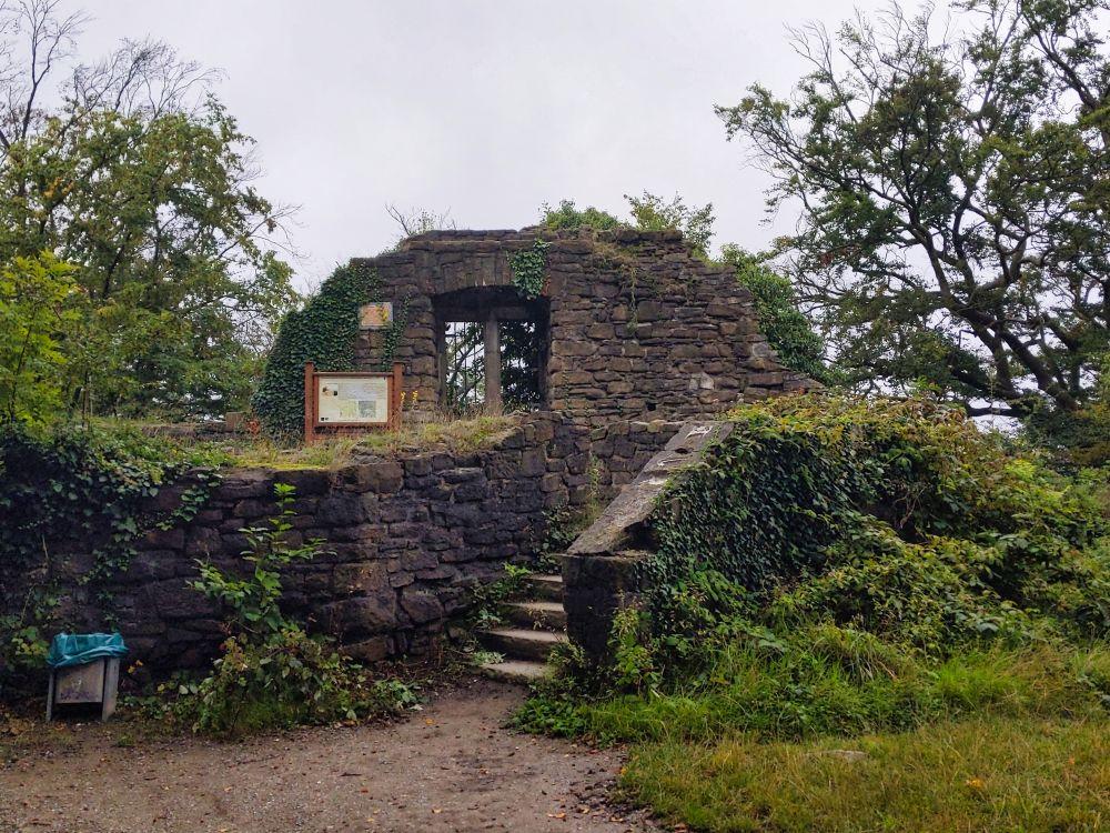 Die Ruinen der Burg Neu-Isenburg