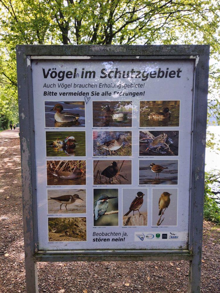 So viele verschiedene Vögel leben hier im Naturschutzgebiet