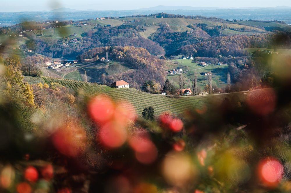 Die schönsten Herbstwanderungen liegen in der Südsteiermark