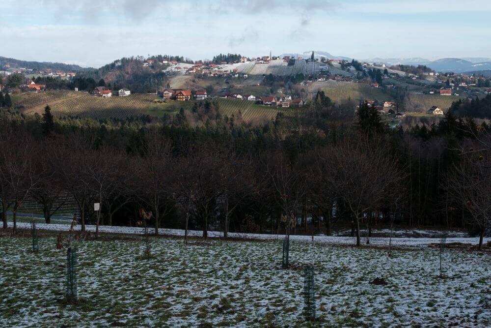 Ausblick auf die Weinberge am Hochgrail im Winter