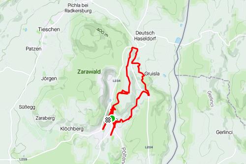 Alpaka Wanderung in der Südoststeiermark 1